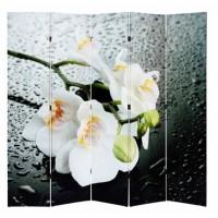 Ширма «Орхидеи»